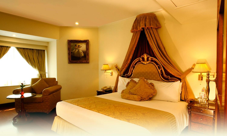 Double Bedroom The Royal Plaza Delhi